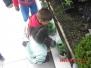 Infantil 1 - Plantando Girassóis